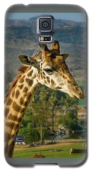 Giraffe Galaxy S5 Case by April Reppucci