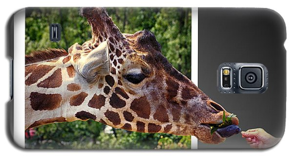 Giraffe Feeding Out Of Frame Galaxy S5 Case