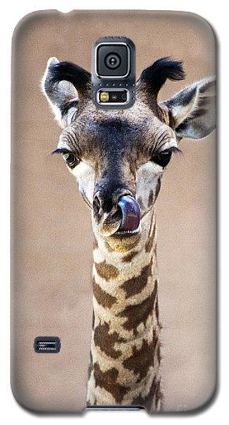 Giraffe Lick Galaxy S5 Case