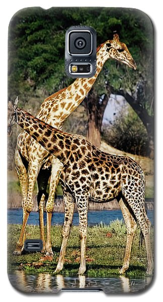 Giraffe Mother And Calf Galaxy S5 Case