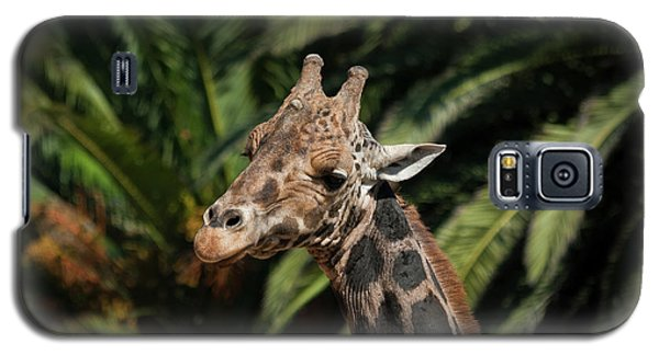 Galaxy S5 Case featuring the photograph Giraffe  by Roger Mullenhour