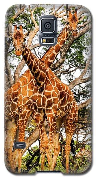 Giraffe's Looking Galaxy S5 Case