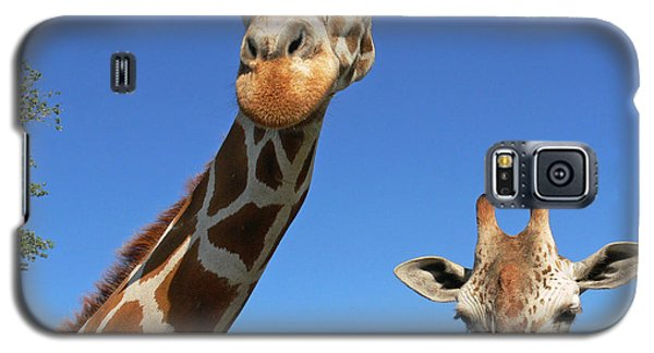 Giraffes Galaxy S5 Case