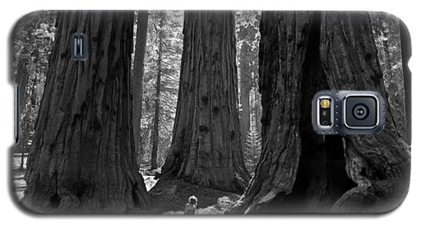 Girl And Giants Galaxy S5 Case