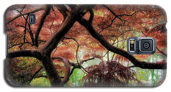 Giverny Gardens Galaxy S5 Case by Jim Hill