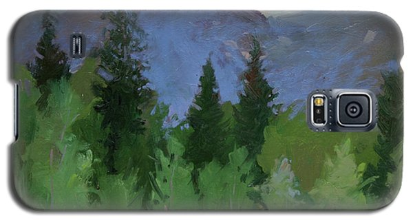 Glacier Nat'l Park - Plein Air -  Rising Wolf Ranch Galaxy S5 Case