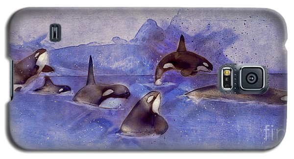 Glacier Whales Galaxy S5 Case by Methune Hively