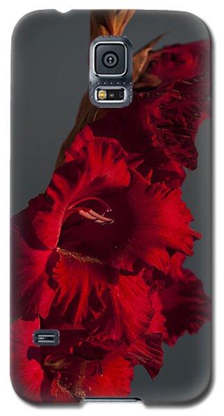 Gladiolus Against A Dark Cloud Galaxy S5 Case