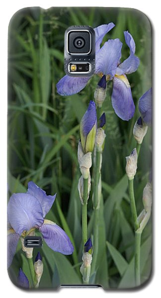 Glads Galaxy S5 Case by Cynthia Powell