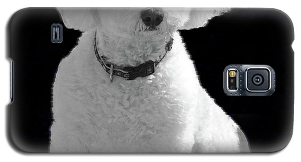 Glamorous Coco Galaxy S5 Case