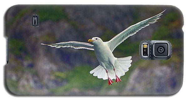 Glaucous-winged Gull Galaxy S5 Case