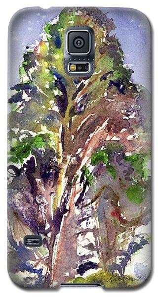 Glendalough Tree Galaxy S5 Case