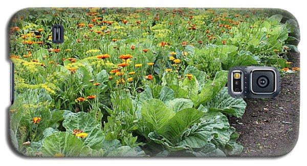 Glenveagh Castle Gardens 4276 Galaxy S5 Case