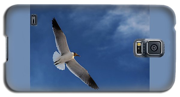 Glider Galaxy S5 Case by Don Spenner
