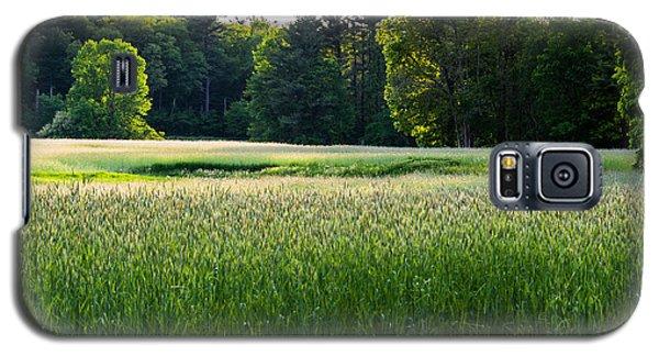 Glistening Green Galaxy S5 Case