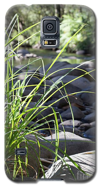 Galaxy S5 Case featuring the photograph Glistening In The Sunlight by Linda Lees
