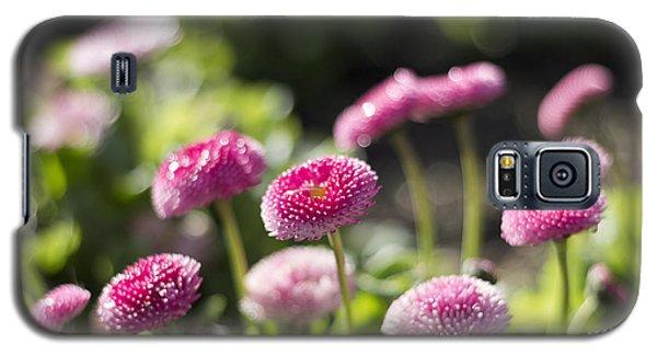 Glittering Daisies Galaxy S5 Case