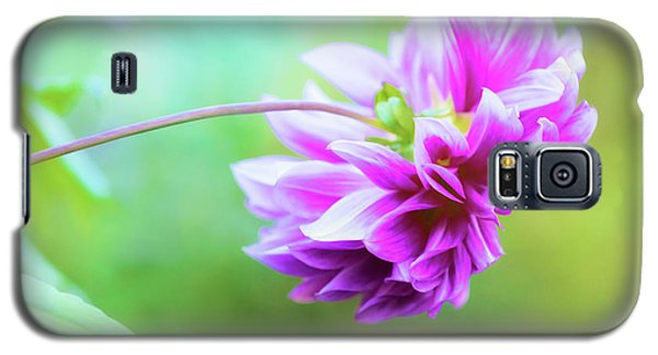 Glorious Autumn Dahlia Galaxy S5 Case