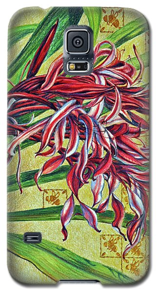 Galaxy S5 Case featuring the drawing Glorious Crinum by Suzanne McKee