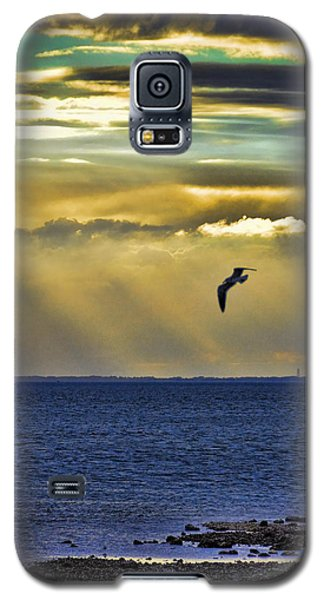 Galaxy S5 Case featuring the photograph Glorious Evening by Jan Amiss Photography