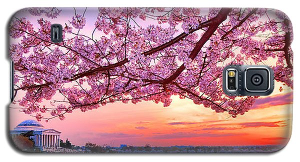 Glorious Sunset Over Cherry Tree At The Jefferson Memorial  Galaxy S5 Case by Olivier Le Queinec