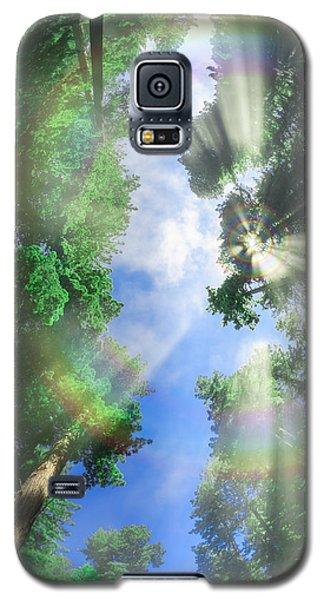 Glory Amongst Redwoods Galaxy S5 Case