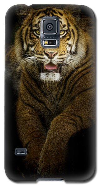 Galaxy S5 Case featuring the photograph Glory by Cheri McEachin