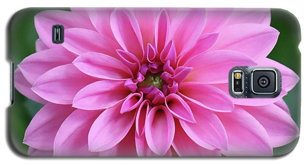 Glory Of The Garden Galaxy S5 Case