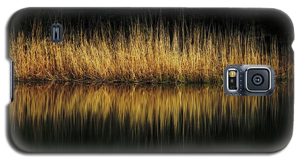 Glow And Reflections At Lakes Edge Galaxy S5 Case by Gary Slawsky