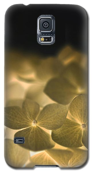 Glow Blossoms Galaxy S5 Case
