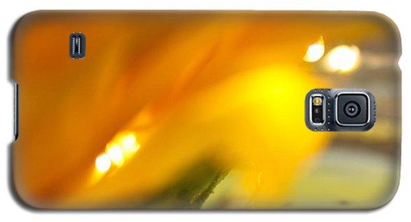 Glow Galaxy S5 Case by Bobby Villapando