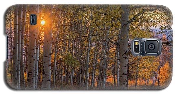 Glowing Aspen, La Sal Mountains Galaxy S5 Case