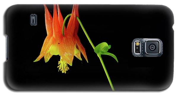 Glowing Colombine Galaxy S5 Case