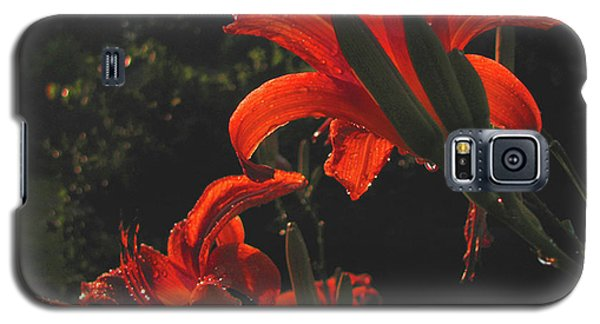 Galaxy S5 Case featuring the photograph Glowing Day Lilies by Donna Brown