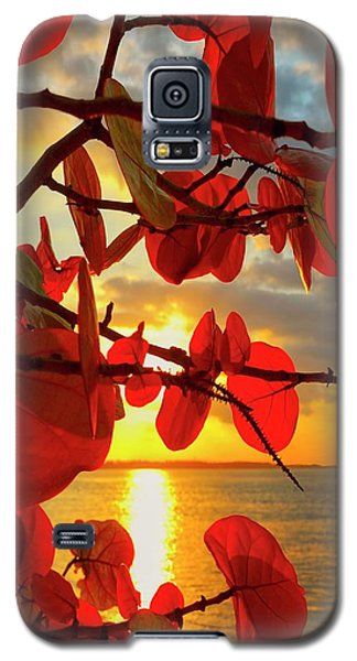 Glowing Red Galaxy S5 Case