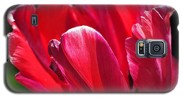 Glowing Red Tulip Galaxy S5 Case by Rona Black