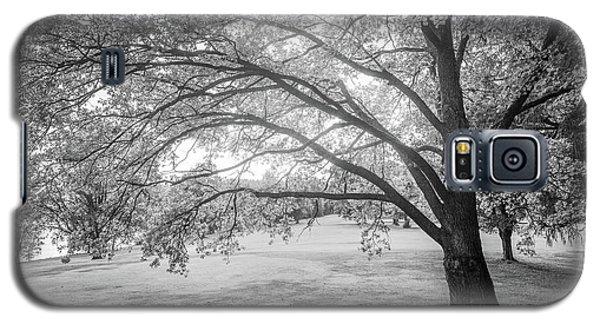Glowing Tree Galaxy S5 Case