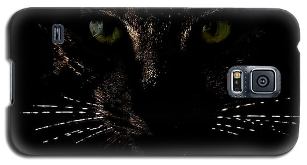 Glowing Whiskers Galaxy S5 Case