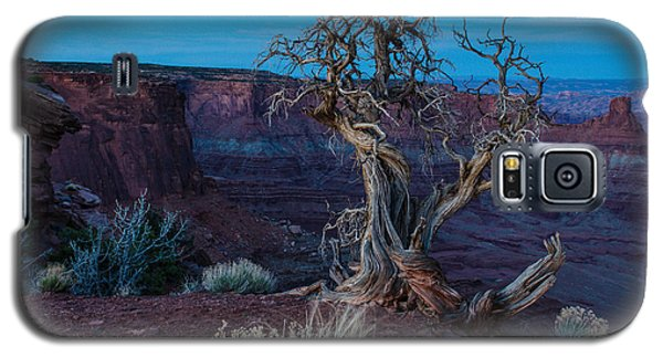 Galaxy S5 Case featuring the photograph Gnarled by Paul Noble