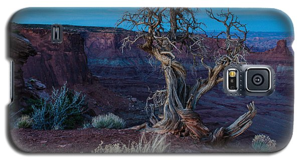 Gnarled Galaxy S5 Case by Paul Noble
