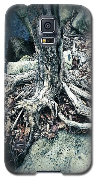 Gnarled Rooted Beauty Galaxy S5 Case