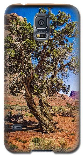 Gnarled Utah Juniper At Monument Vally Galaxy S5 Case