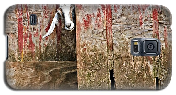 Goat And Old Barn Door Galaxy S5 Case