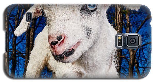 Goat High Fashion Runway Galaxy S5 Case