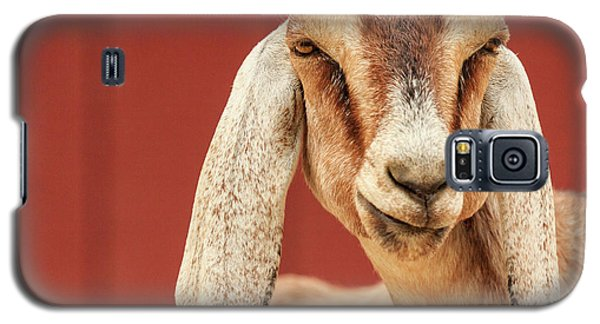 Goat With An Attitude Galaxy S5 Case