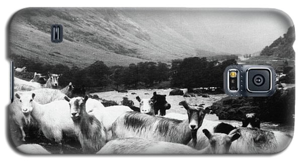 Galaxy S5 Case featuring the mixed media Goats In Norway- By Linda Woods by Linda Woods