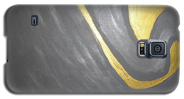 Gold And Gray Galaxy S5 Case by Barbara Yearty