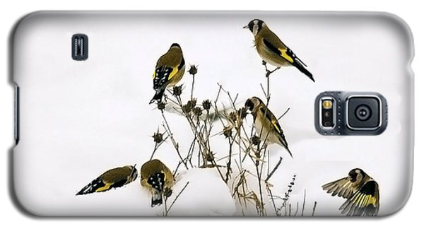 Gold Finches In Snow Galaxy S5 Case