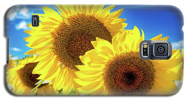 Galaxy S5 Case featuring the photograph Gold by Greg Fortier