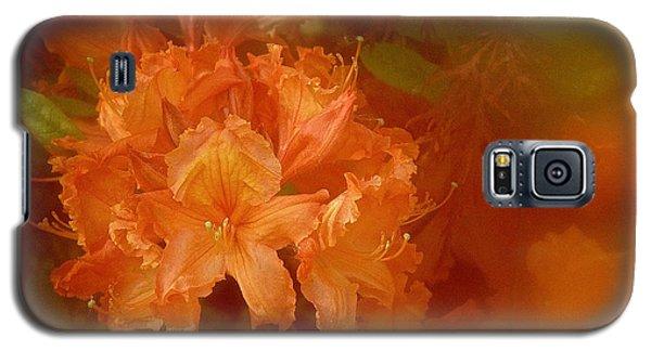 Gold Galaxy S5 Case by Richard Cummings